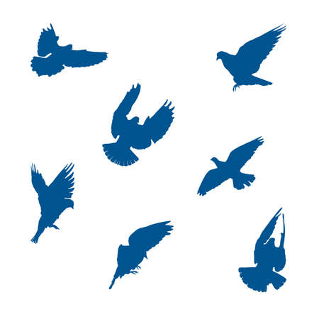 Set of vector illustrations of pigeons or doves silhouettes flying with wings spread in different angles