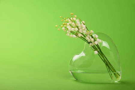 Close up bouquet of lily of the valley fresh spring flowers in heart shaped transparent glass vase over green background with copy space, low angle view