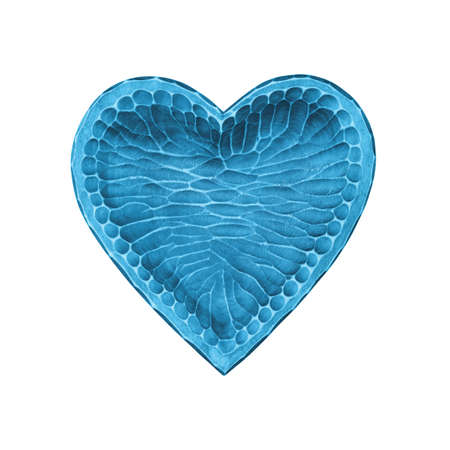 Close up one pastel blue painted natural wooden carved heart shaped empty bowl isolated on white background 写真素材