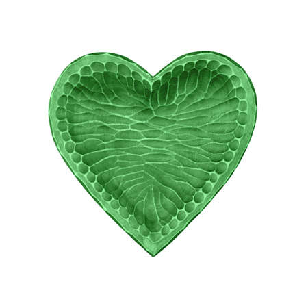 Close up one green painted natural wooden carved heart shaped empty bowl isolated on white background