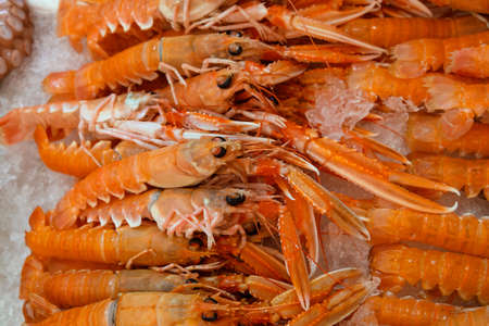 Close up fresh catch of raw red langoustines (Nephrops norvegicus, Norway lobster, Dublin Bay prawn or scampi) on ice at retail market display, high angle view