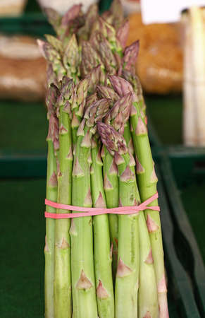 Bundle bunch of fresh green garden asparagus shoots close up, low angle view