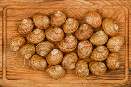 Close up two dozen of escargot land snail shells on brown oak wood cutting board background, elevated top view, directly above Stok Fotoğraf