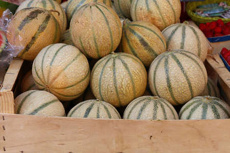Close up whole fresh ripe summer cantaloupe melons on retail display of farmers market, high angle view Stok Fotoğraf