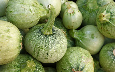 Close up fresh new green baby round zucchini on retail display of farmers market, high angle view