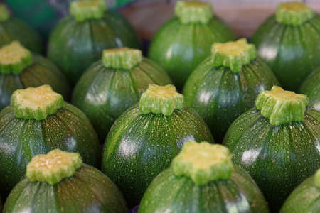 Close up fresh new green baby round zucchini in a row in box on retail display of farmers market, high angle view