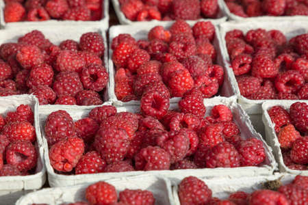 Close up fresh red raspberry berries in paper container on retail display of farmers market, high angle view