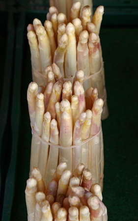 One bunch of fresh white garden asparagus shoots on retail market display, close up, high angle view Stok Fotoğraf