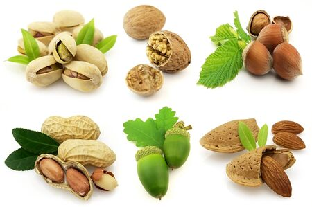 pekan: various isolated nuts with realistic drop shadows for depth on white background