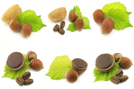 pekan: Nuts on white background Stock Photo