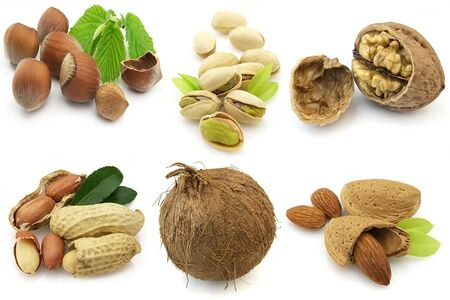 noix: various isolated nuts with realistic drop shadows for depth on white background