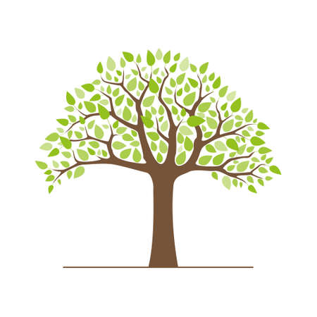 vector tree with green leaves on white background Vector