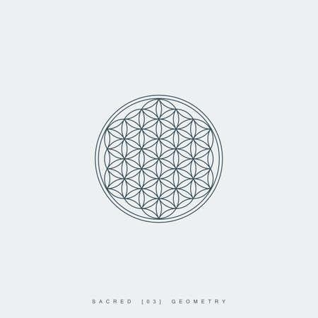 esoteric: sacred geometry. flower of life. mandala ornament. esoteric or spiritual symbol. geometric line art shape. isolated on white background. vector illustration