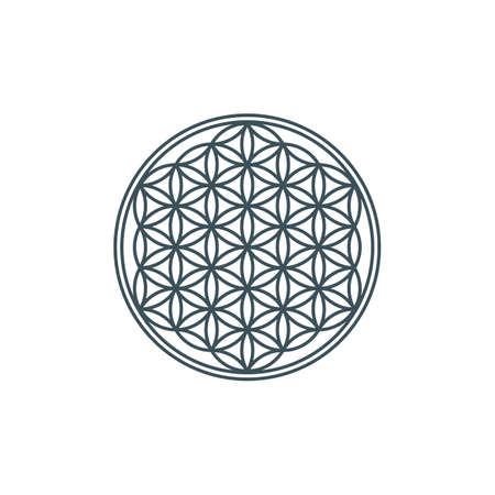 thin line flower of life. mandala ornament. sacred geometry. esoteric or spiritual symbol. geometric line art shape. isolated on white background. vector illustration