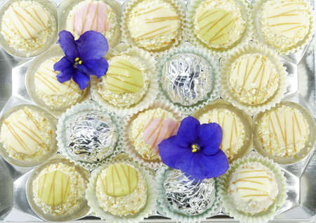 Delicious pralines in fresh bright colors photo