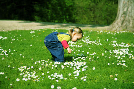 greenfield: Small girl in the meadow looking at flowers