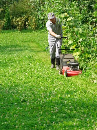 Gardening - cutting the grass photo