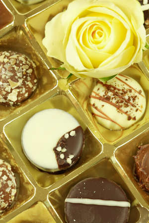 Delicious chocolate pralines with rose photo