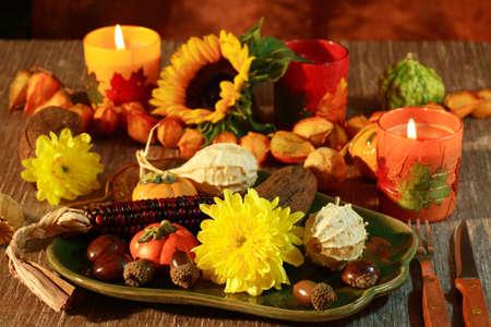 conker: Happy Thanksgiving Stock Photo