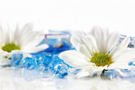 productos de belleza: Wellness y Spa bodeg�n  Foto de archivo