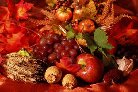 accion de gracias: Sin embargo la vida y la cosecha o decoraci�n de la mesa de Acci�n de Gracias