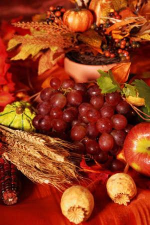 högtider: Thanksgiving