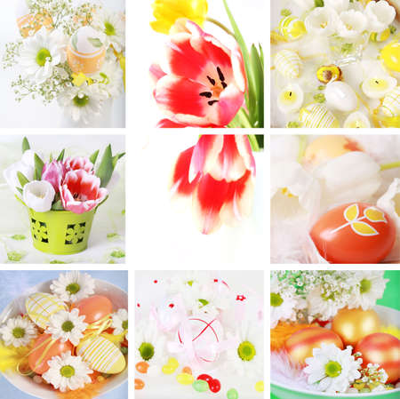 Collection of eight still live photos for Easter in fresh colors Stock Photo - 6236882