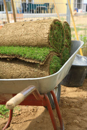 Stack od rolled grass sod for lawns and gardening photo