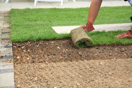 Man laying sod for new garden lawn Stock Photo