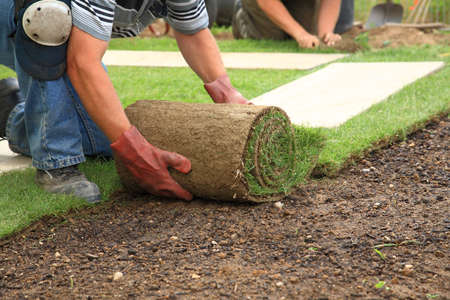 garden landscaping: Man laying sod for new garden lawn Stock Photo