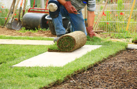 landscaping: Man laying sod for new garden lawn Stock Photo