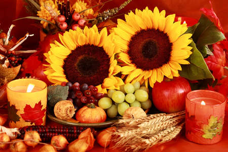 thanksgiving harvest: Still life and harvest or table decoration for Thanksgiving
