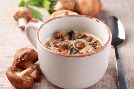 agaricus: Mushroom soup with field mushroom (agaricus) and shiitake mushroom