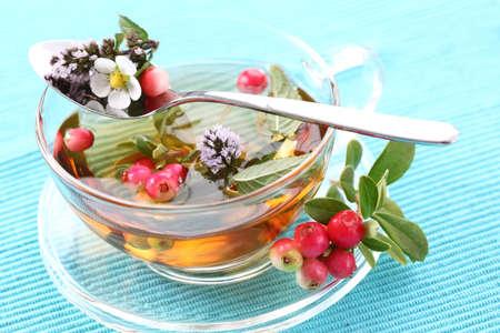 Vitalität Tee mit Preiselbeeren und Cranberry und Minze (Vitalität Berry)