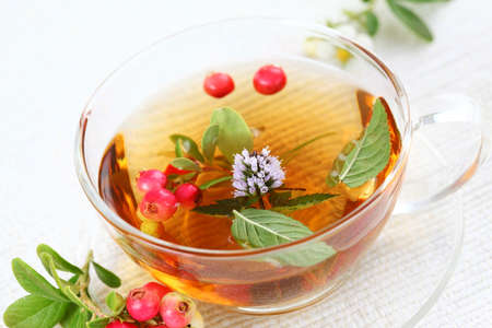 Vitality tea with lingonberry and cranberry and mint (vitality berry) Stock Photo - 8894671