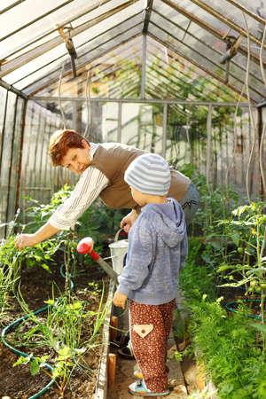 Niños ayudando: Anciana trabajando con un niño pequeño en el invernadero Foto de archivo