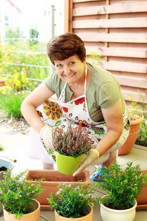 replant: Fiori donna anziana di reimpianto per una migliore crescita