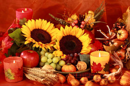 thanksgiving: Still life and harvest or table decoration for Thanksgiving