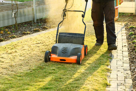 sod: Using a scarifier to improving quality of the lawn