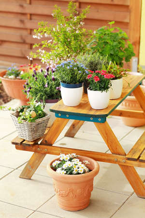 Outdoor flower pots for small garden, patio or terrace Stock Photo - 13012871