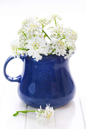 arrangement: Spring flowers in vase on the table
