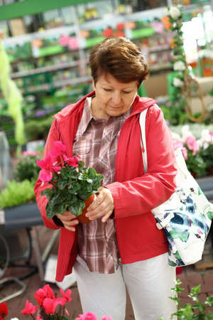 Senior woman looking for plants in flower shop photo