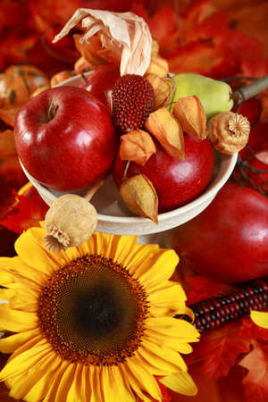 Fresh apples and sunflower on the autumn table photo