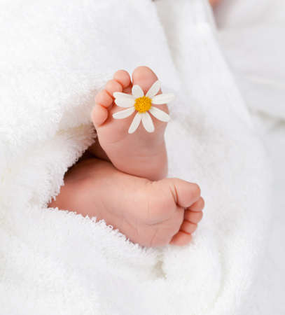 newborn baby: Lovely infant foot with little white daisy