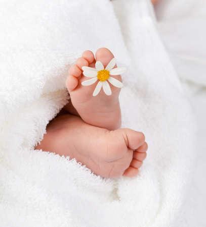 pies bonitos: Pie beb� encantador con margarita blanca