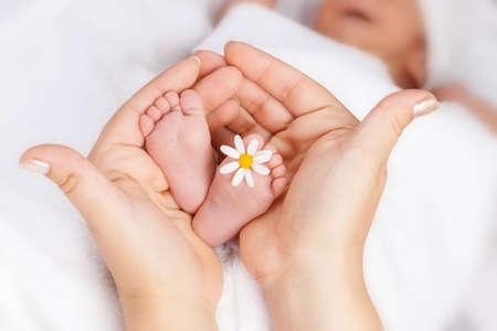 petites fleurs: Pied b�b� adorable avec peu de marguerite blanche dans les mains des m�res Banque d'images