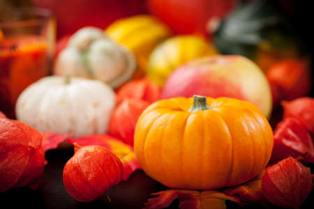 background settings: Happy Thanksgiving - pumpkins and apples for Thanksgiving