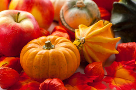 Traditional pumpkins for Halloween in warm colors photo