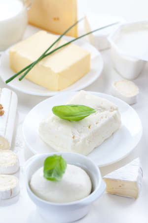 dairy products: Assortment of dairy products on white background