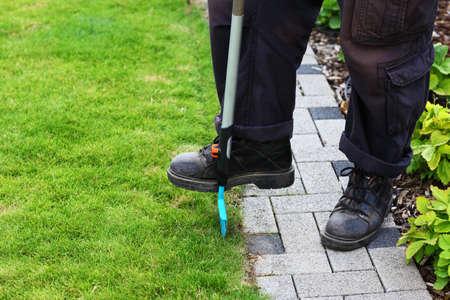 Garden care - edging lawn Stock Photo - 15865081
